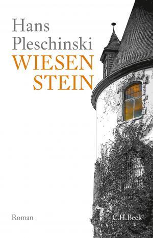 Pleschinski Hans - Wiesenstein